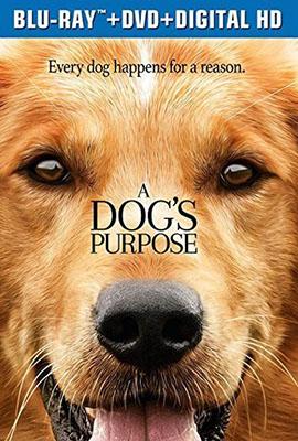 A Dog s Purpose หมา เป้าหมาย และเด็กชายของผม